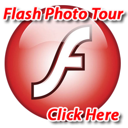 Performance Auto Parts Flash Tour